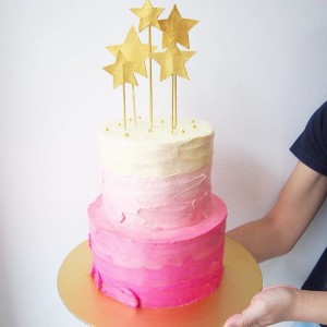 2 tier ombre pink cake